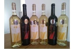 Král vín České republiky 2019